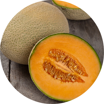 Hawaii Cantaloup